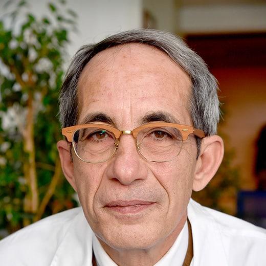 Prof. ANDREA GIACCARI