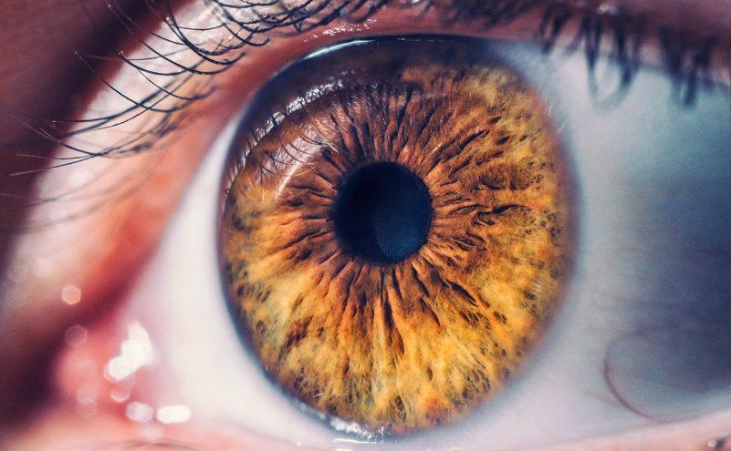 pacchetto retina al gemelli